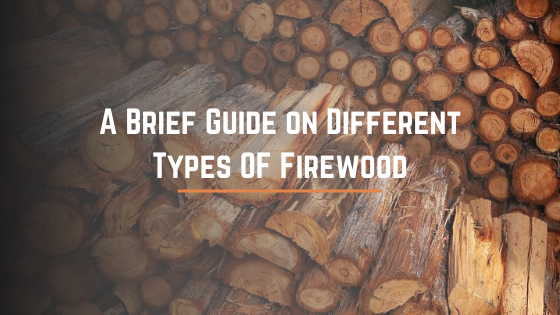 A Brief Guide on Different Types OF Firewood