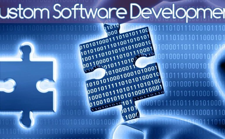 Custom software development firm